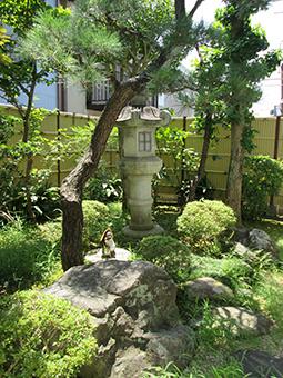 静岡ENTクリニック 窓からの景色